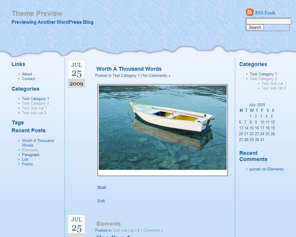 Essentially Blue best WordPress theme
