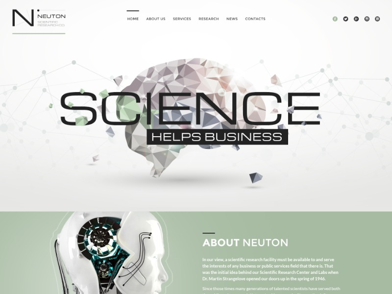 Neuton top WordPress theme