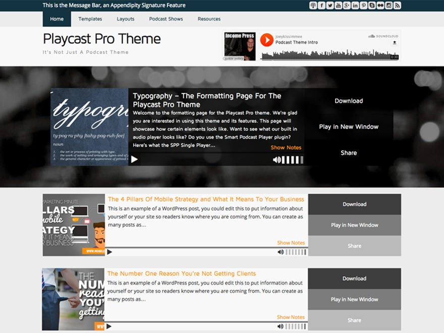 Playcast Pro Theme WP theme