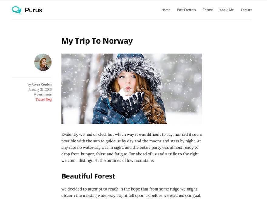 Purus WordPress template free download