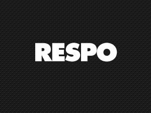 Respo Theme WordPress theme