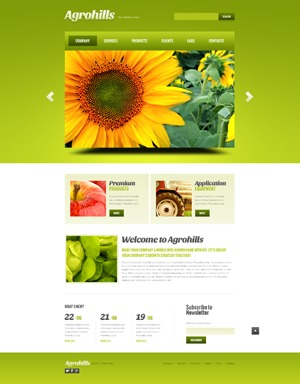 theme1777 WordPress theme
