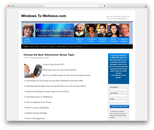 Twenty Ten WordPress theme free download - windowstowellness.com