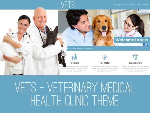 VETS medical WordPress theme