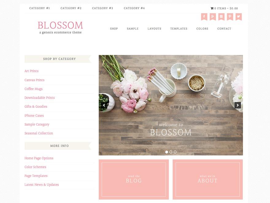 WP theme Blossom Theme