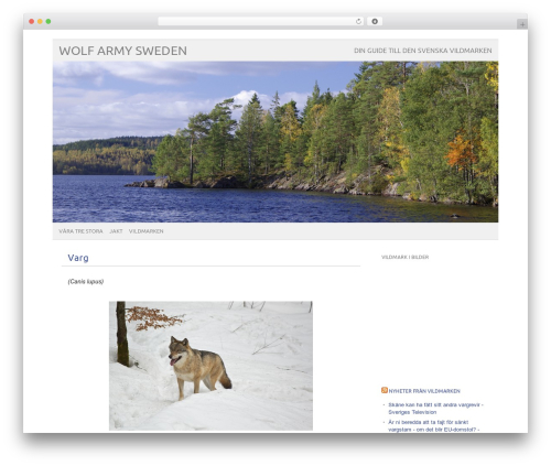 WP theme picolight - wolfarmysweden.se