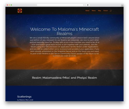 Divi best WordPress theme - malomaxdew.com