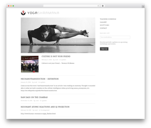 Origin WordPress template free download - yogashramana.com