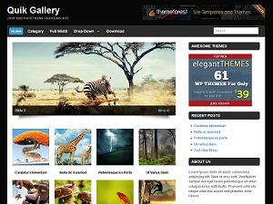 Quik Gallery WordPress blog template