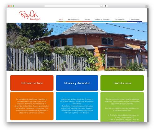 WordPress website template Avada - rayun.cl