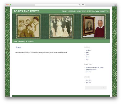 WordPress website template picolight - roadsandroots.com