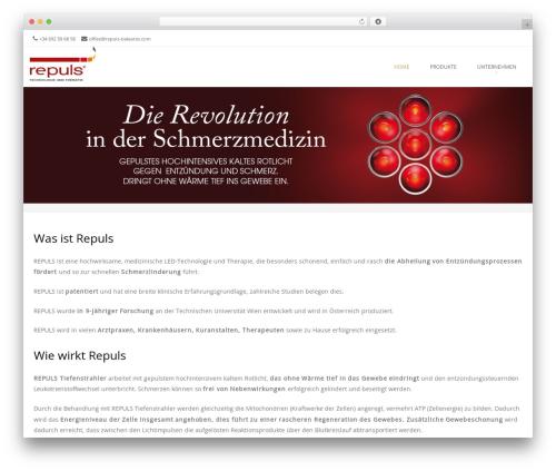 Brasserie Pro WordPress website template - repuls-baleares.com