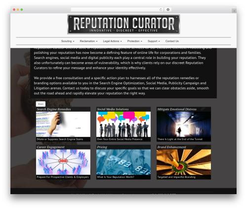 Shoestrap 3 best WordPress template - reputationcurator.com