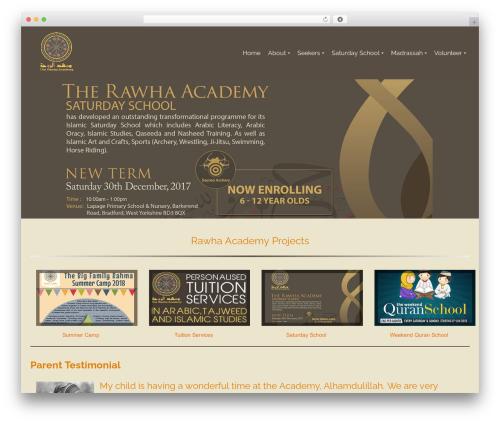 Pinnacle best free WordPress theme - rawhaacademy.org