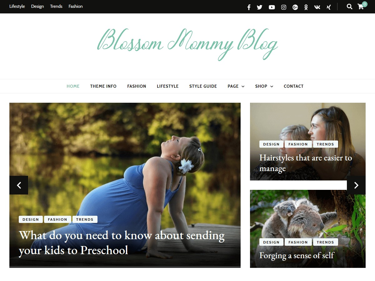 Blossom Mommy Blog food WordPress theme