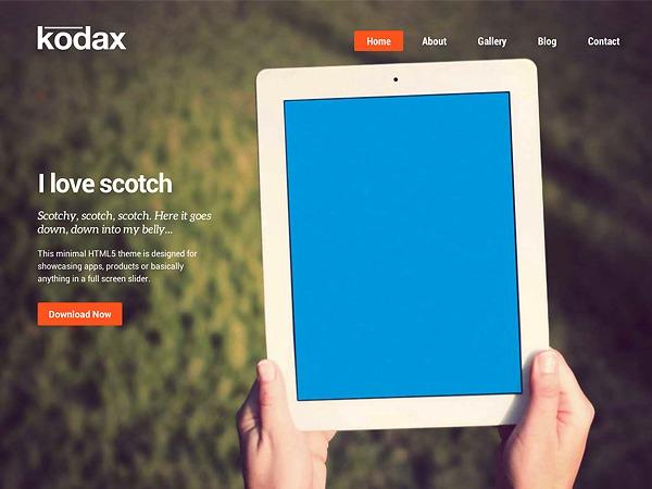 Kodax (shared on wplocker.com) WordPress portfolio theme