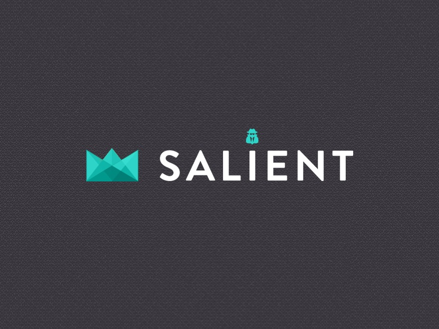 WordPress template Salient