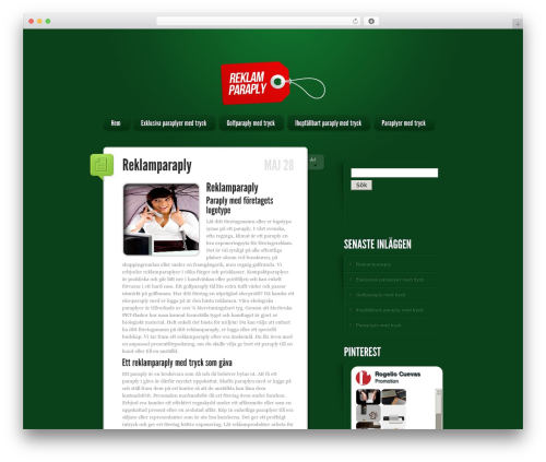 WordPress website template LightBright - reklamparaply.com