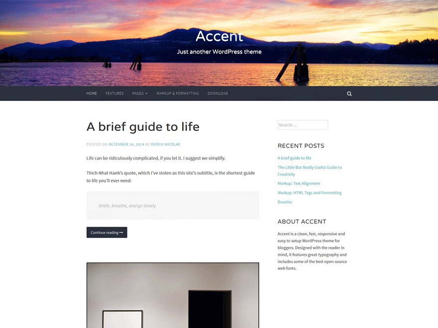 Accent WordPress photo theme