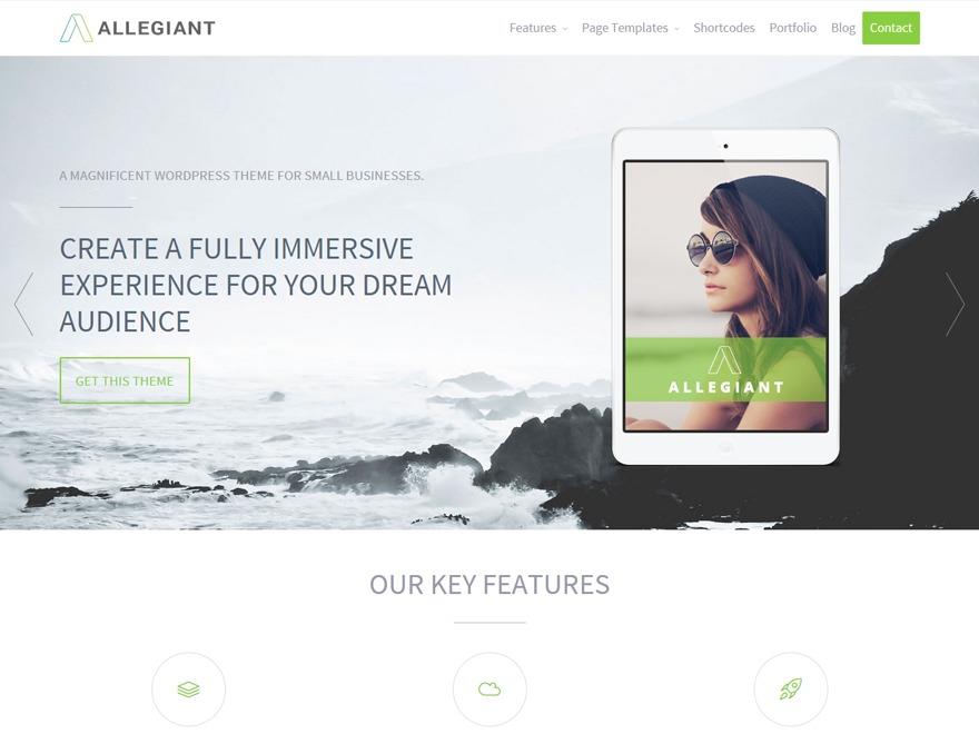 Allegiant theme WordPress portfolio