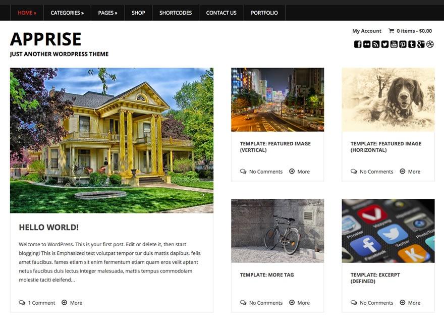 Apprise theme WordPress