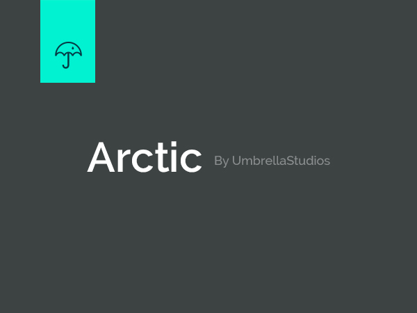 Arctic best portfolio WordPress theme