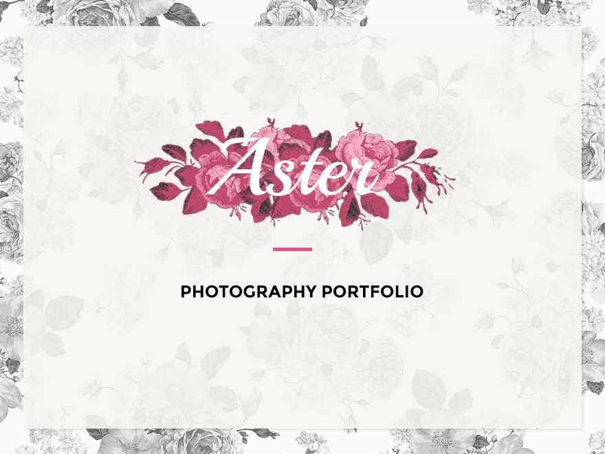 Aster free WP theme