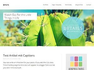Baylys best portfolio WordPress theme