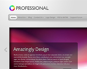 Best WordPress template TheProfessional