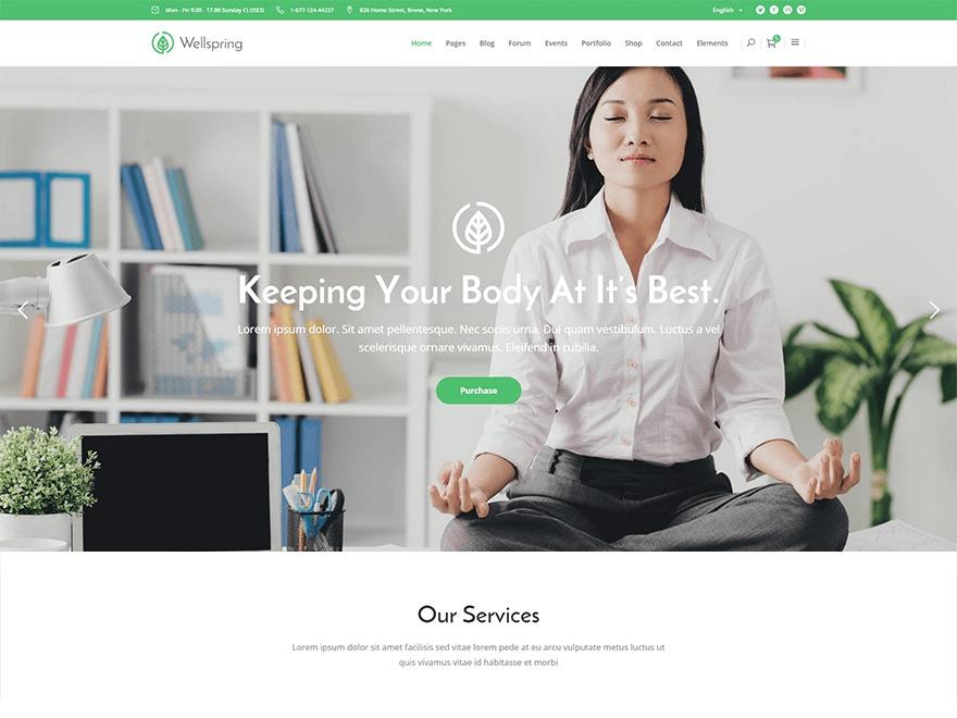 Best WordPress theme WellSpring