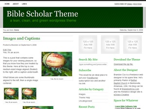 Bible Scholar WordPress photo theme