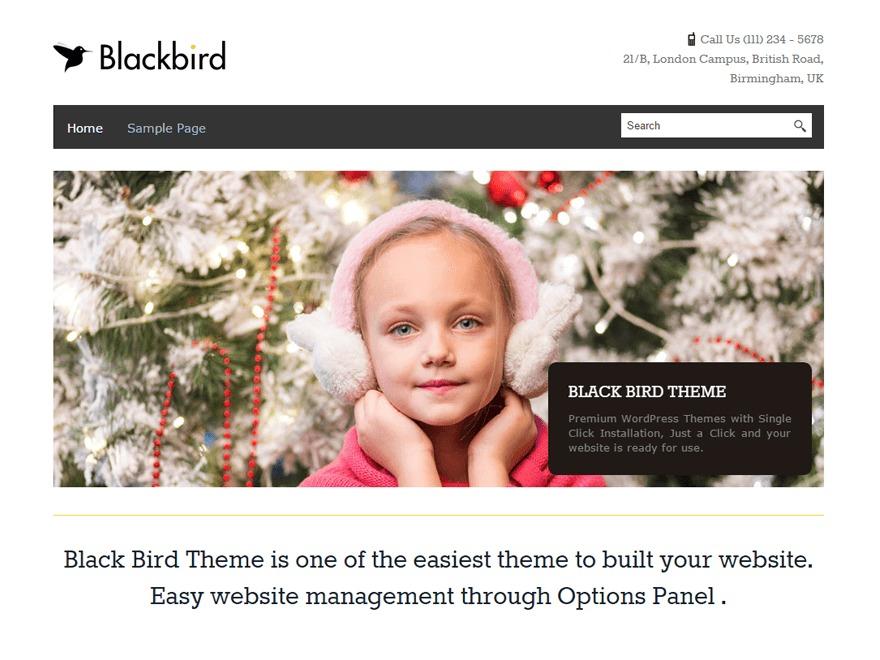 BlackBird WordPress template for business