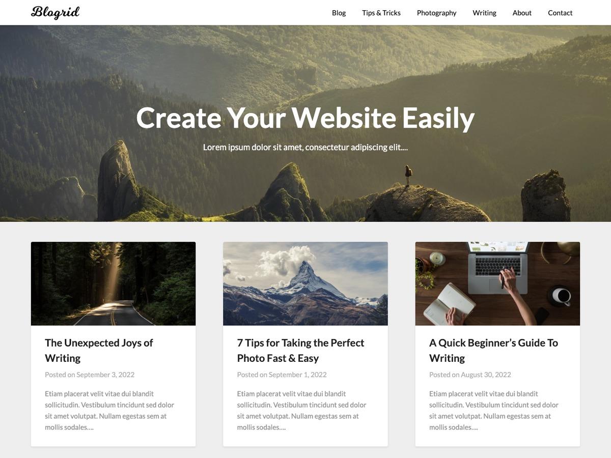Blogrid WordPress blog theme