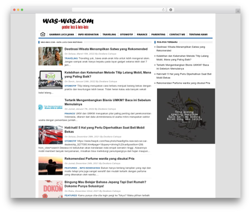 BorderSEO Wordpress Theme best WordPress template - was-was.com