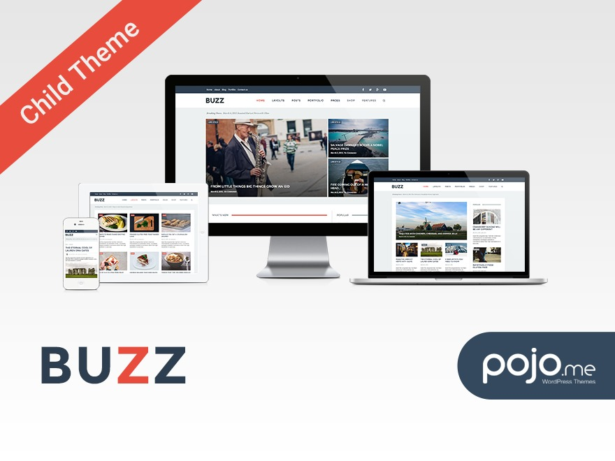 Buzz Child WP theme