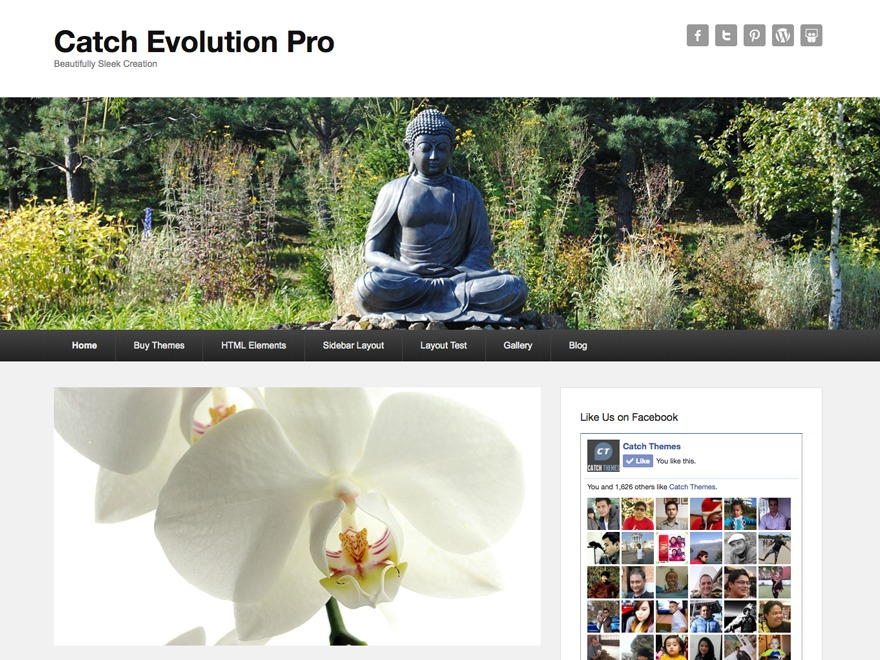 Catch Evolution Pro WordPress theme design