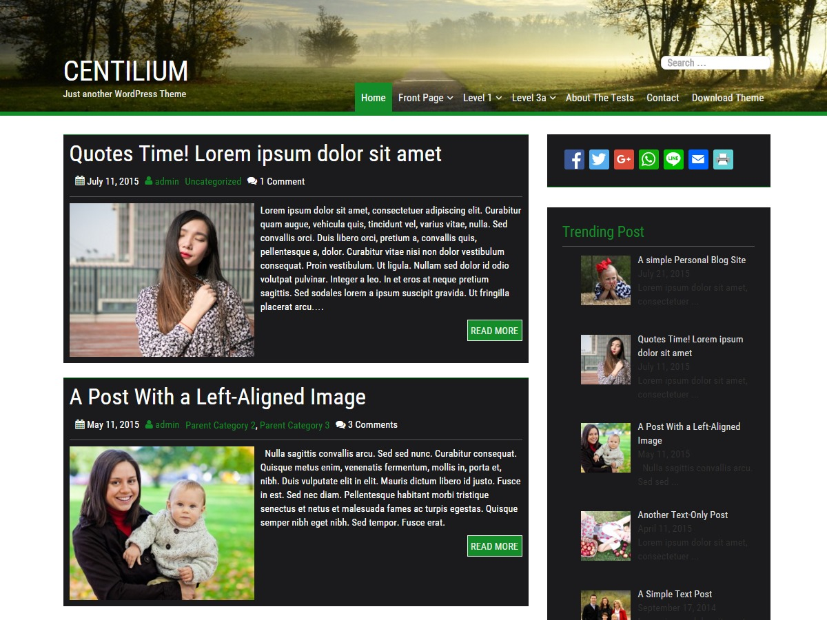 Centilium WordPress blog template