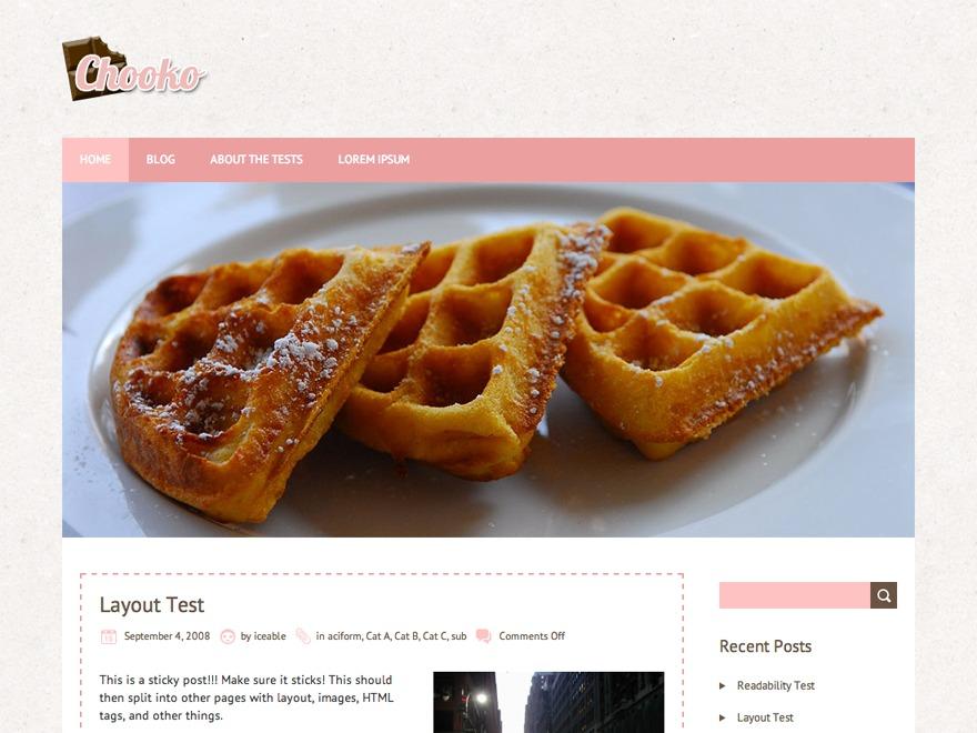Chooko Lite best free WordPress theme