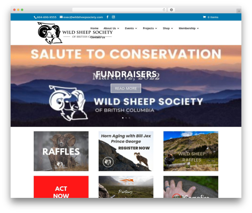 Divi theme WordPress - wildsheepsociety.com