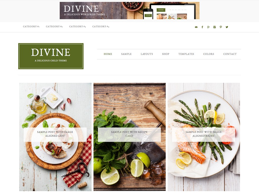 Divine Theme WordPress page template