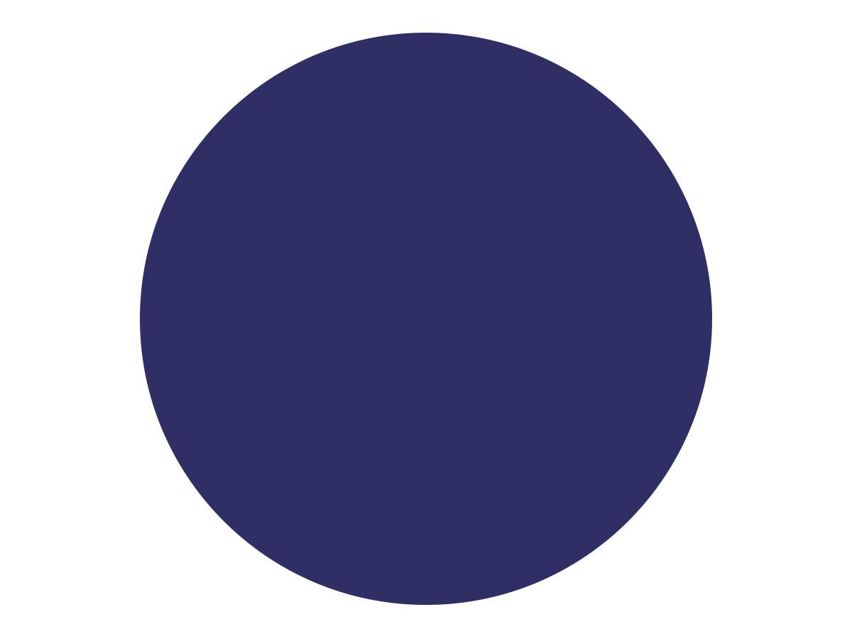 Dynamic WordPress theme