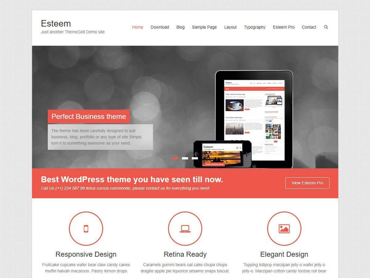 Esteem free website theme