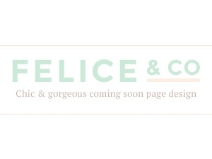 Felice best WordPress theme
