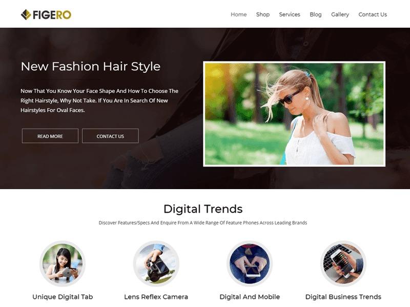 Figero free WordPress theme