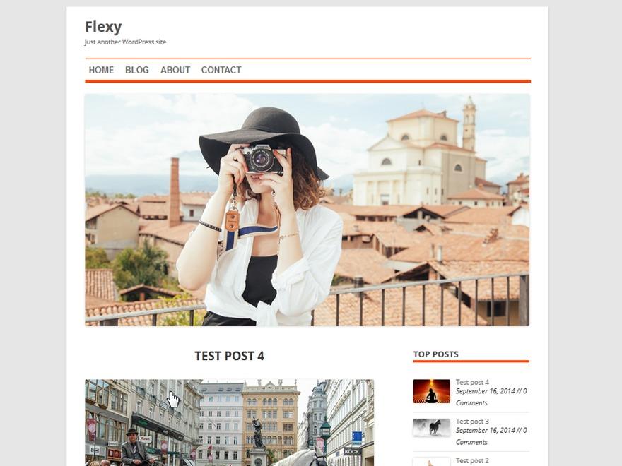 Flexy newspaper WordPress theme