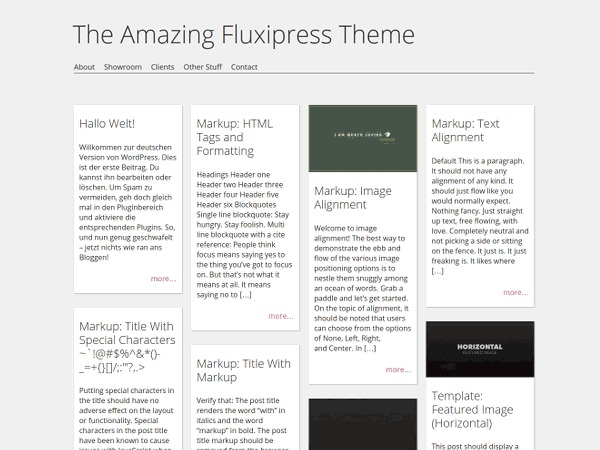 Fluxipress premium WordPress theme