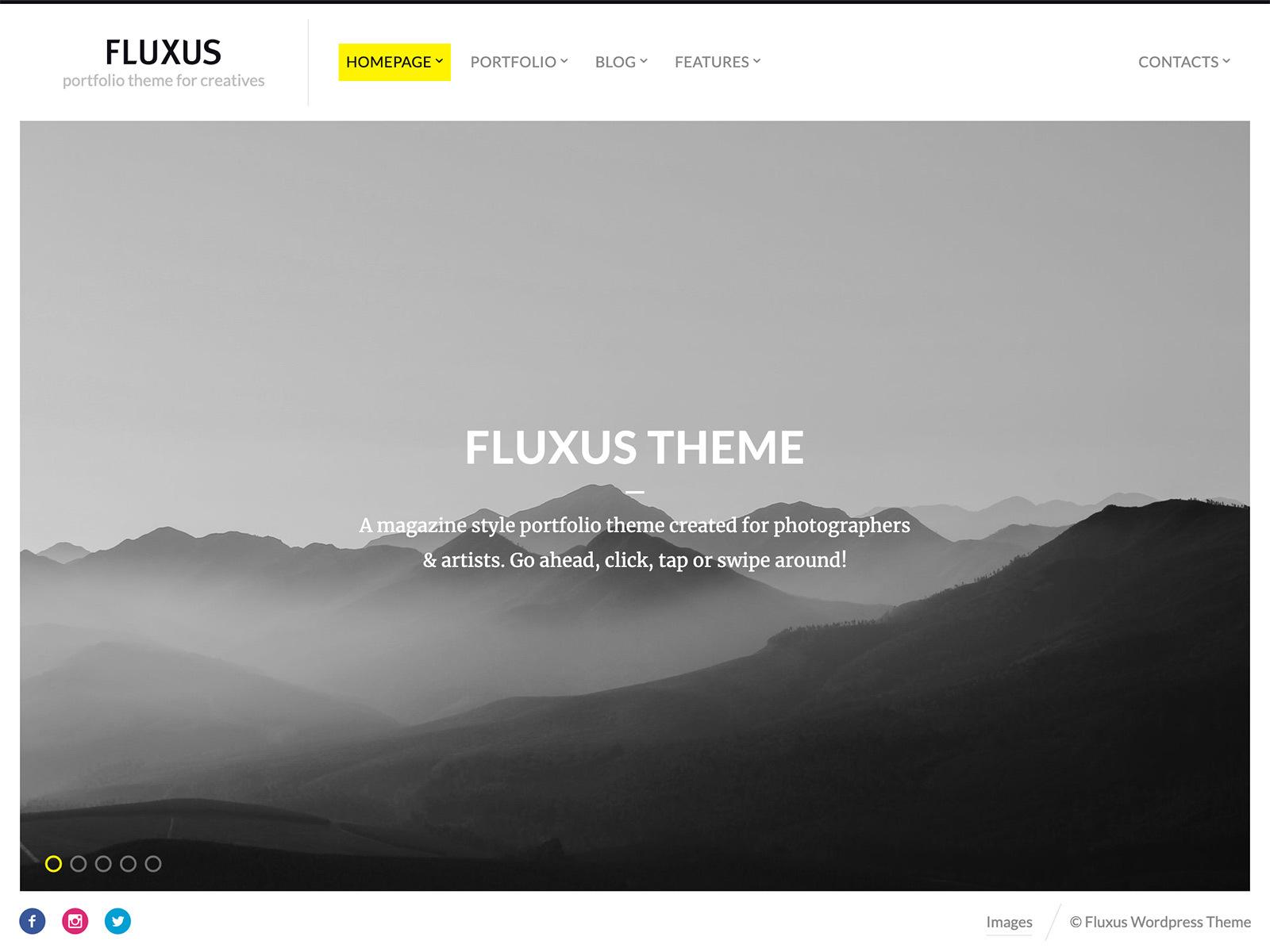 Fluxus WordPress theme image