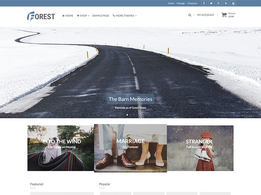 Forest WordPress template free