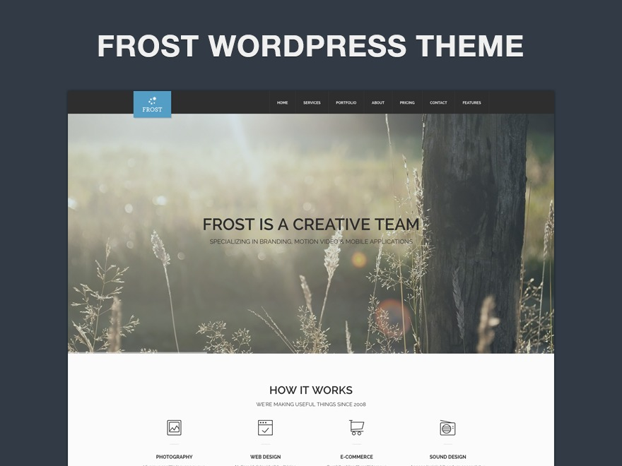 Frost premium WordPress theme
