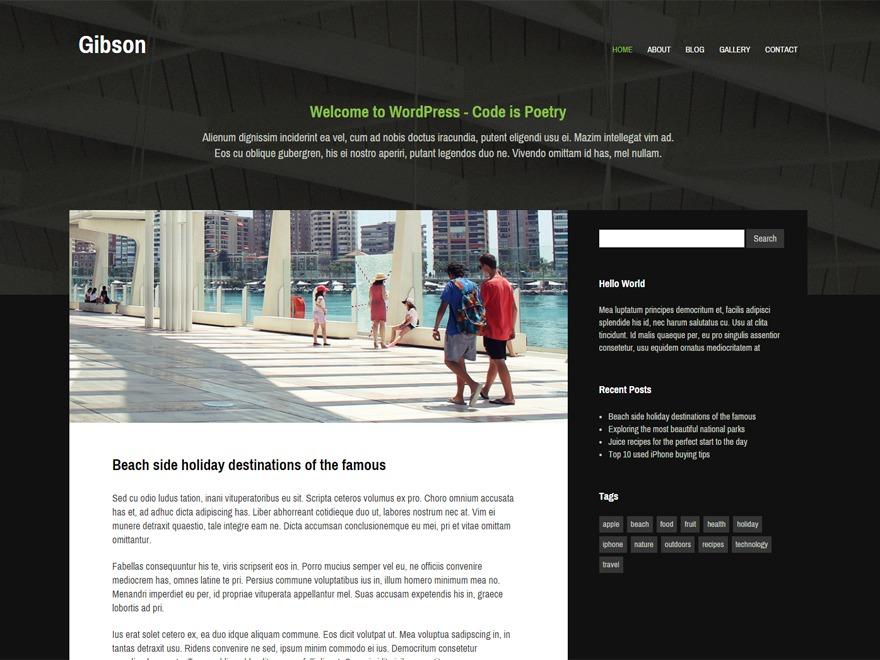 Gibson WordPress theme design